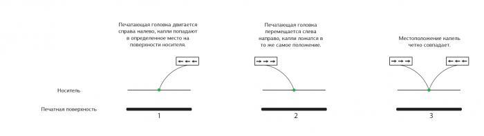 Превосходя стандарты: новый уровень качества с Mutoh XpertJet 1641SR и 1682SR